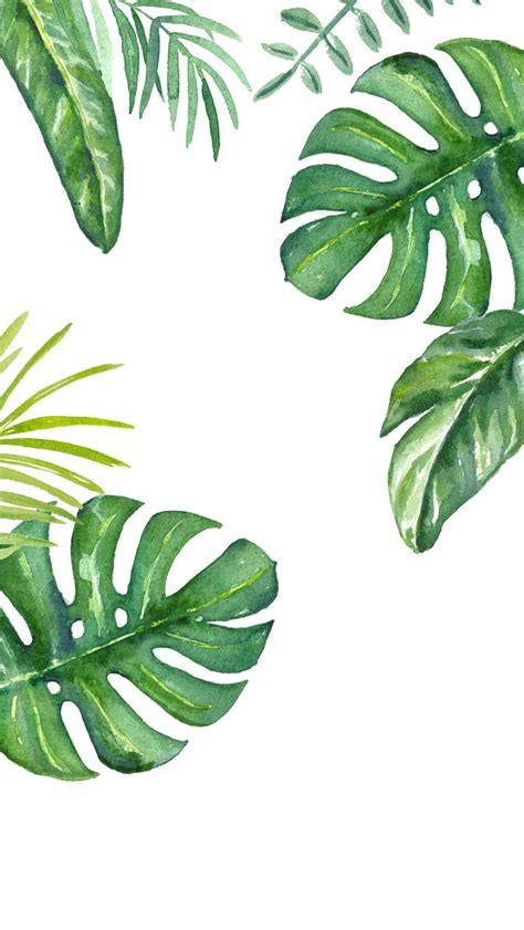 wallpaper for iphone leaves dlolleys help iphone 5s jungle leaves wallpapers