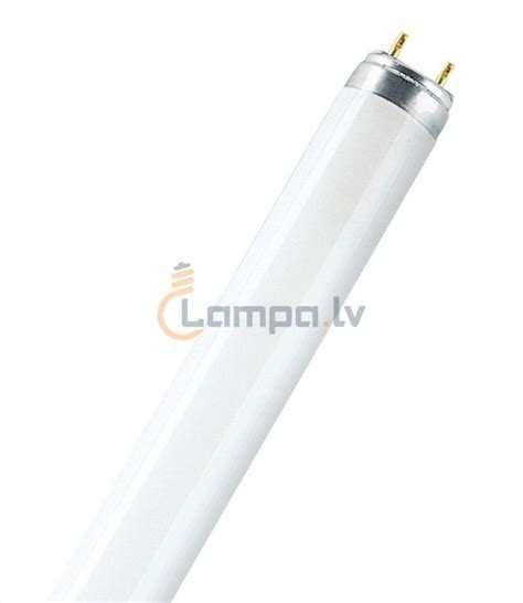 Fluorescent L by Fluorescent Bulb Osram L 36w 965 Biolux Daylight G13
