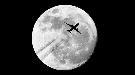 httpwwwimfarmaciasesnoticia5206nos hemos adaptado al mundo 30 superluna te mostramos las mejores fotos que han