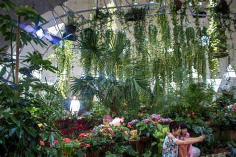 indoor butterfly garden uk butterfly garden 5 picture of dubai butterfly garden