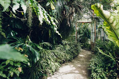 singleton botanical gardens singleton botanical gardens glasshouses swansea south wales haarkon photography