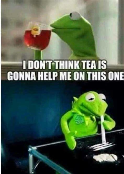 Meme Generator Kermit - kermit memes humor pinterest kermit memes and