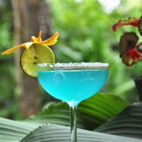 blue margarita blue margarita recipe bevvy