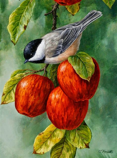 pintura para cuadros cuadros pinturas oleos cuadros de pajaros y frutas de