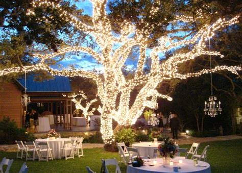 outdoor lighting for weddings 25 best ideas about lighted trees on outdoor