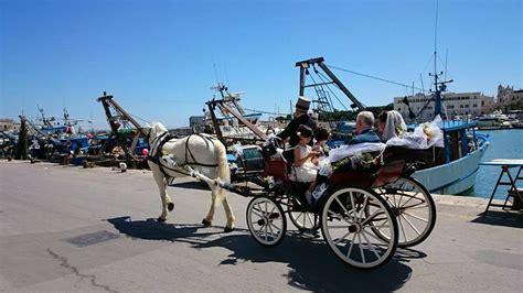matrimonio in carrozza matrimoni in carrozza equestrian academy a s d maneggio