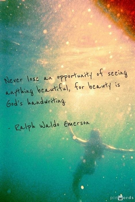 never lose an opportunity of seeing anything beautiful never lose an opportunity of seeing anything beautiful