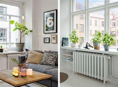 floreros galvanizados decoraci 243 n f 225 cil diariodeco11 decorar con plantas las