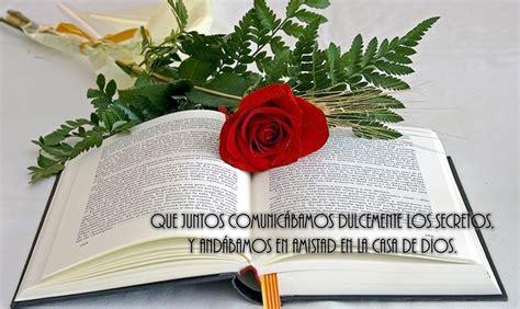 imagenes rosas con frases cristianas im 225 genes de flores con frases cristianas de amor y amistad