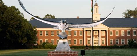 Uncw Mba by Bed And Breakfast Lodging Option For Uncw Hotel Alternative