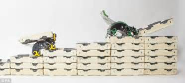 rise of the ant bots amazing robots behave like termites