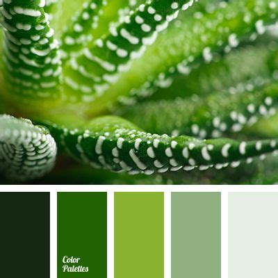 green combination 17 best ideas about green colors on pinterest colorful