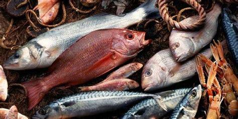 intossicazione alimentare sintomi intossicazione alimentare sintomi e rimedi naturali
