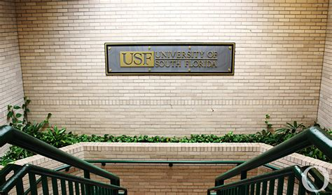 Usf Mba Program Ranking by Usf Ranks In Top 25 For Programs Olc