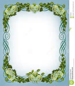 ivy hydrangea floral border wedding invitation stock