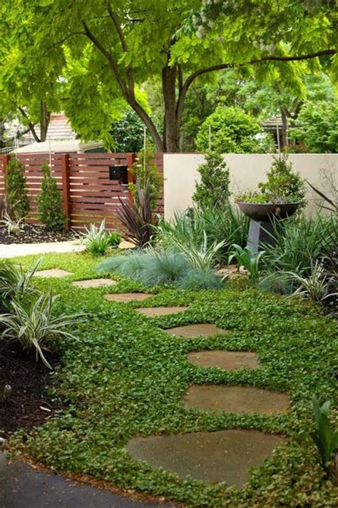 Patio Ground Cover Ideas by 17 Best Images About Landscape Design Ideas On