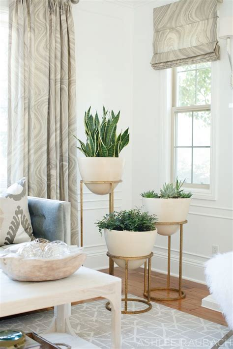 floor plants home decor 25 best ideas about living room plants on pinterest