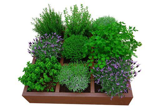mag een meeple op een tuin kabinet pepijn verheyen potten en boogserres kabinet