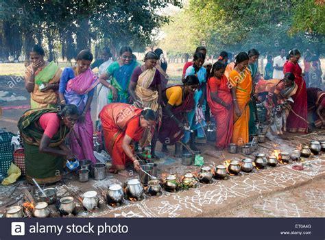 women celebrating pongal festival in tamil nadu india stock photo royalty free image
