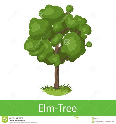 elm tree symbolism elm tree cartoon icon stock vector image 63153121