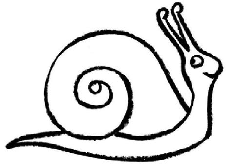 Snail Template Coloring Home