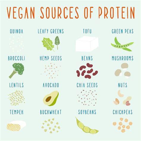 protein rda rda of protein burns not