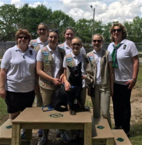 ace hardware navarre cadette girl scout troop 25 installed a dog agility course