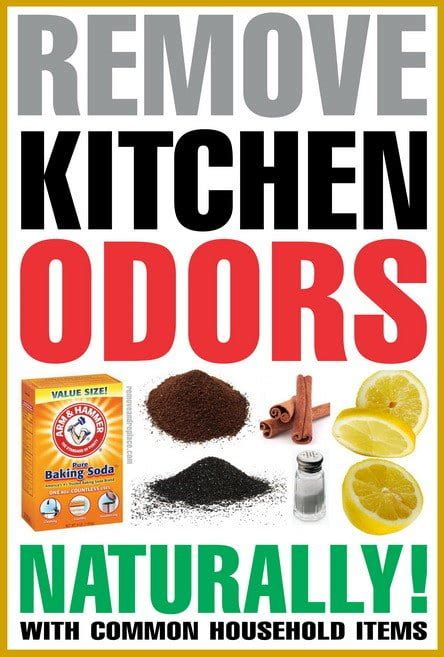 kitchen cabinet odor removal remove cooking odors home design