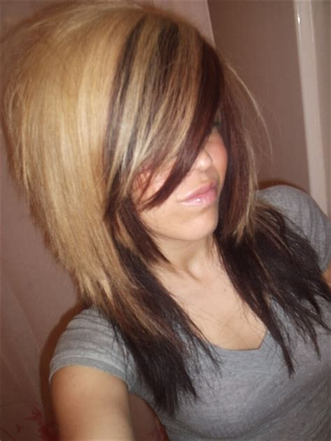 bottom hair color is different pics for gt two tone hair color blonde on top brown on bottom