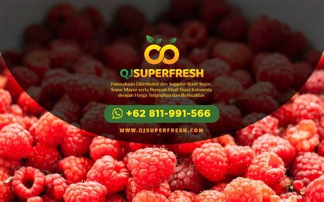 grosir buah strawberry supplier buah alpukat mentega