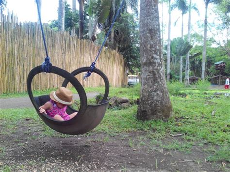 diy tire swing tire swing diy stuff pinterest