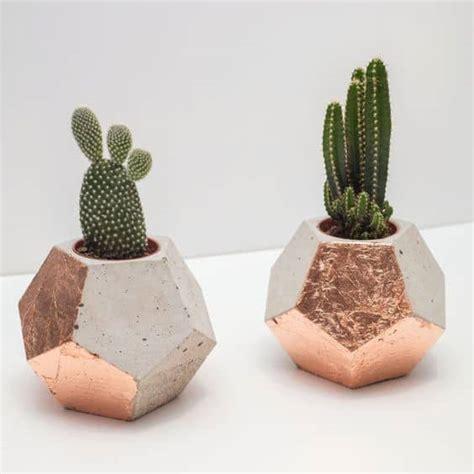 vasi per cactus cactus mania tutorial per vasetti diy di legno fai da te
