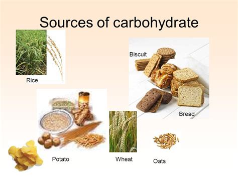 carbohydrates 5 sources carbohydrates foundation module phase 1 department of
