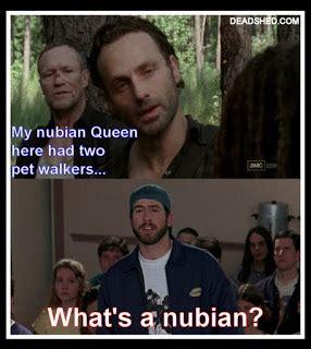 Walking Dead Meme Season 3 - deadshed productions askewniverse edition the walking dead 3x09 memes