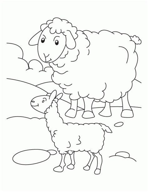 black sheep coloring pages coloring pages for free sheep coloring pages to print coloring home