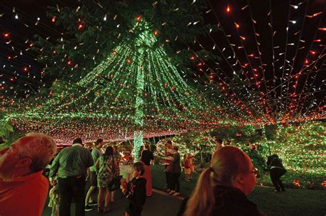 photos amazing christmas celebrations all around the