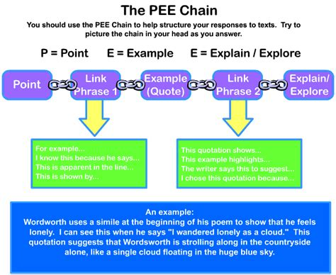 essay structure pee the pee chain in writing point exle explain explore