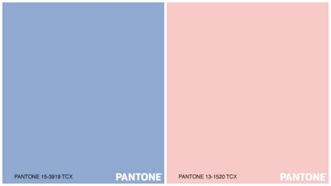 colour of the year 2016 pantone colour of the year 2016 confirms wgsn forecast