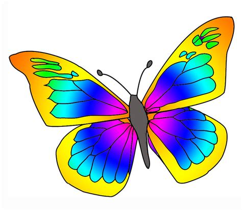 immagini clipart gratis colorful butterfly clipart
