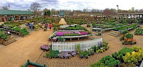 Garden Center Maryland Garden Center Davidsonville Maryland Homestead Gardens Inc