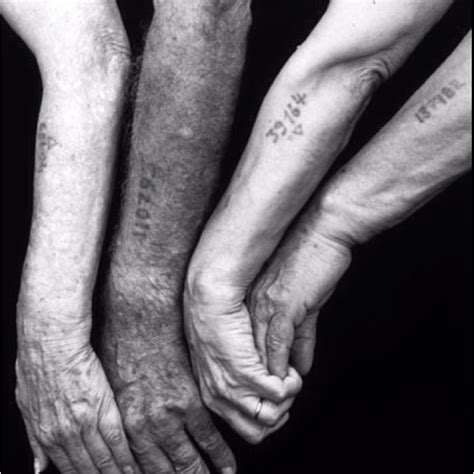 holocaust tattoo history holocaust tattoos holocaust tragedy before and during