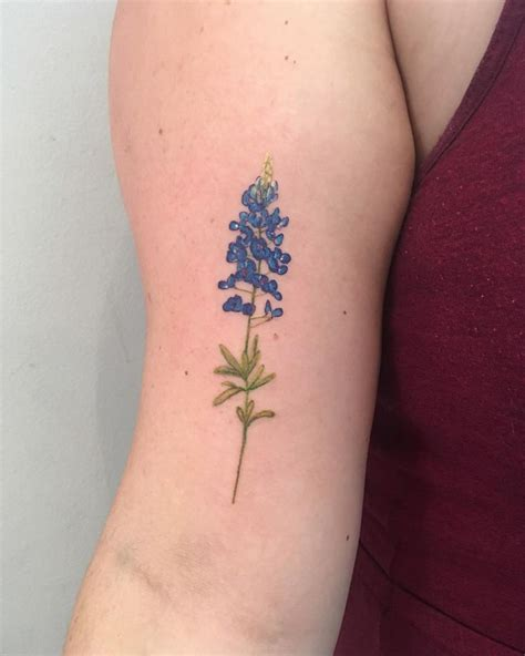 watercolor tattoo texas best 25 bluebonnet ideas on flower