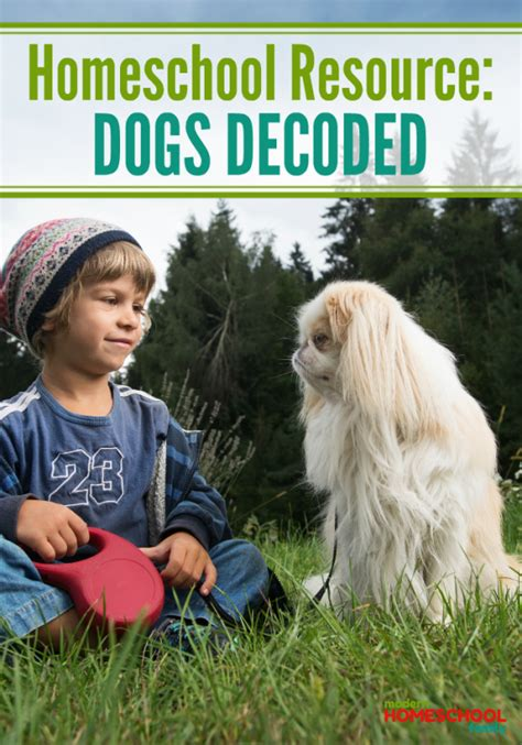 dogs decoded homeschool lesson plan idea dogs decoded modern homeschool family