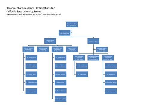 Office Organization Chart Template best photos of office organizational chart template