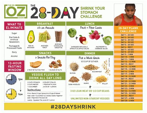 pit 28 reset recioes 28 day shrink your stomach challenge recipes on dr oz food chart weight loss