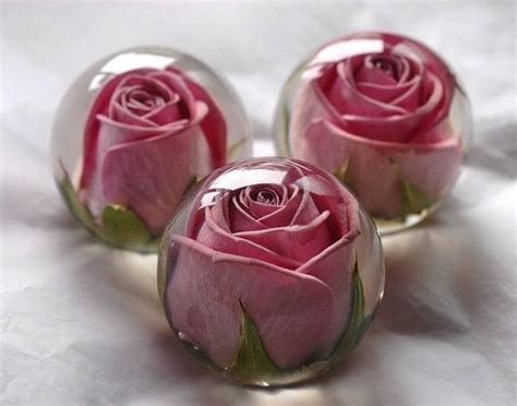Box A Single Preserved Flower Represent And Lo T2909 1 how to preserve indian wedding flowers and bouquet