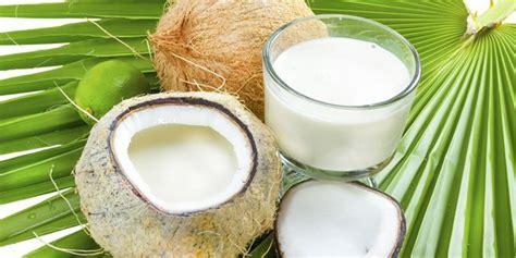 Santan Murni Kelapa bagaimana cara menyimpan santan kelapa yang benar