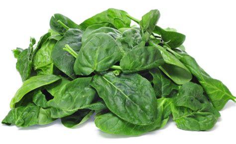 magnesio supremo benefici magnesio negli alimenti propriet 224