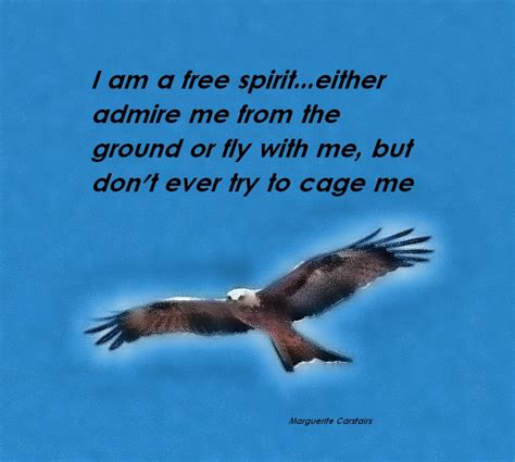 learning to fly if you allow your spirit to soar your mind and might just follow books inspirational quotes 1 it plan it do it