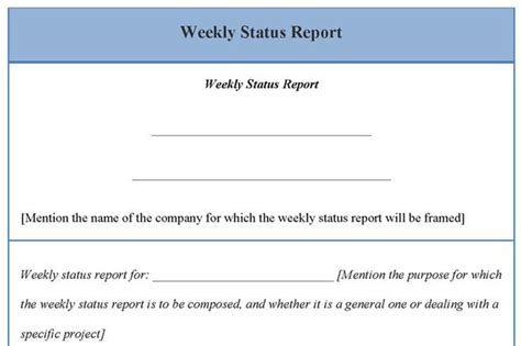 management report template word monthly management report template free